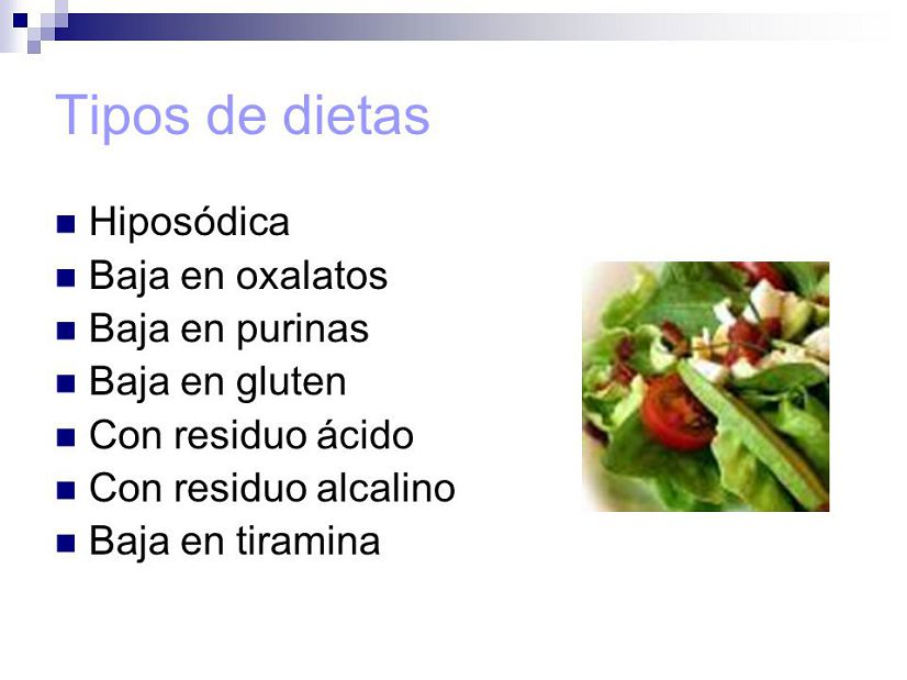 Que es dieta y tipos de dieta